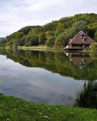 Eifel & See - Ferienwohnungen am Waldsee Rieden/Eifel