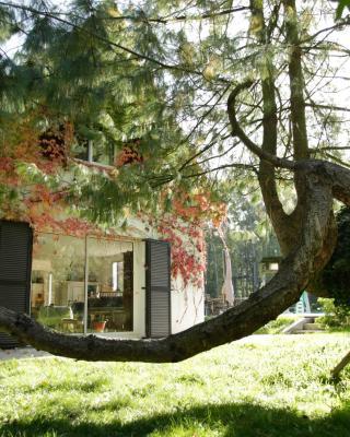 Maison du Rocher de Fontainebleau