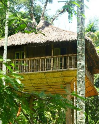 Kalidasa Tree House and villa