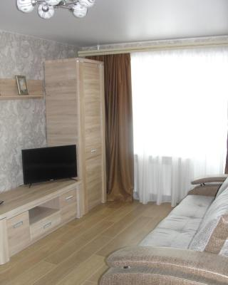 Apartment Pobeda 260