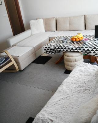 Apartment Mirza