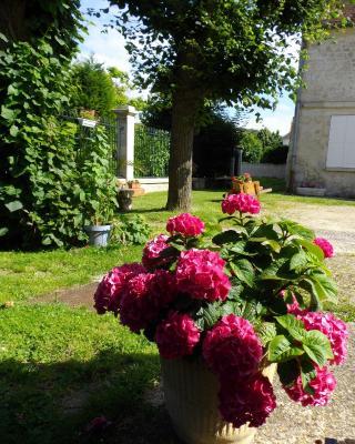 Floroise