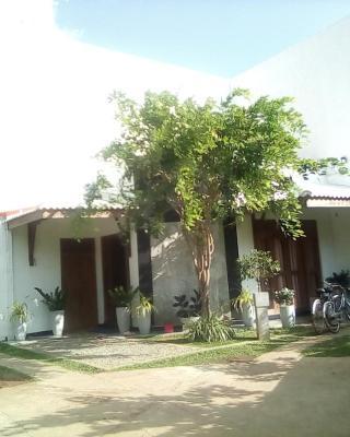 Tree House Holiday Home