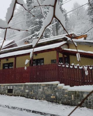 Casa de Vacanta Razvan si Andrei