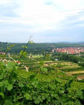 Ferien- und Winzerhof Ute Braun