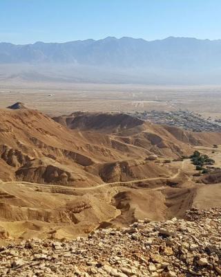 relax in the desert