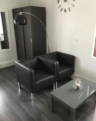 magnifique meublé 24m2 avec parking