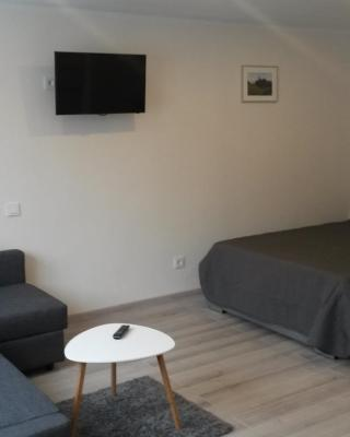 Anykščiai Center Apartment