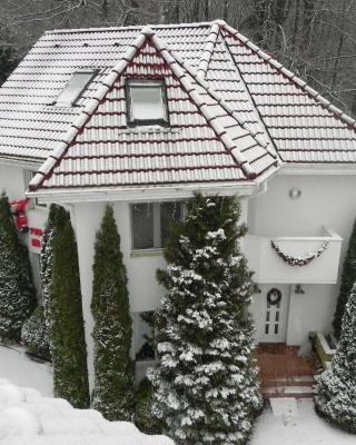 バイオ ブティックホテル クラブ オーストリア