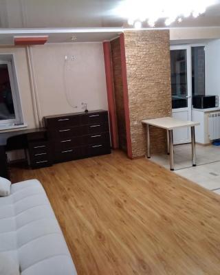Apartment on Prospekt Oktyabrya 67