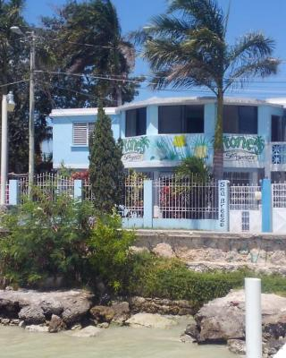 The Waterfront SeaBreeze Guesthouse