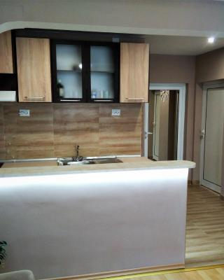 Апартамент Дамянови