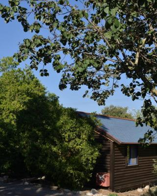 Yokneam Business Suites