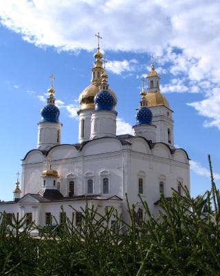 Hostel Alexeevsky