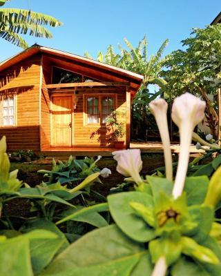 Cabañas Moana Nui