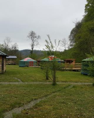 Glan Mydyr Woodland Yurts