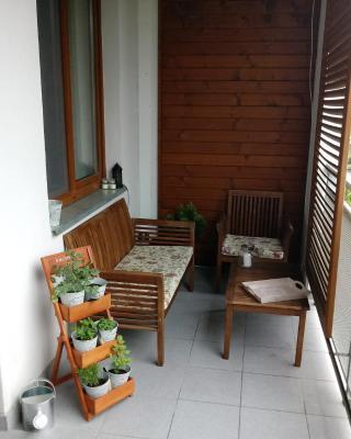 apartament Fanaberia