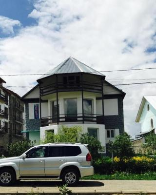 Mzia's House