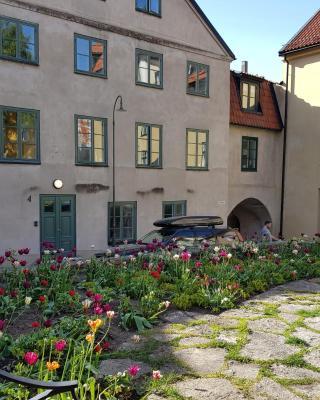 Visby Innerstd