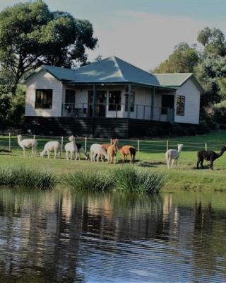 Raynella Alpaca Farmstay