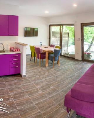 Apartment Vila Tara