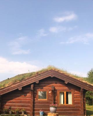 Log home village