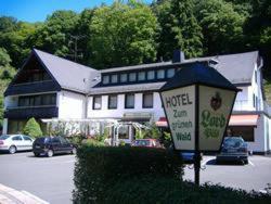 Hotel Zum grünen Wald