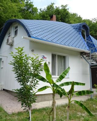 Chalet Guest house