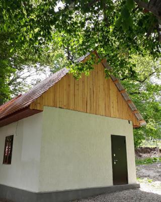 Коттедж Лесной Ручей