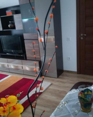 Ayan's Apartment