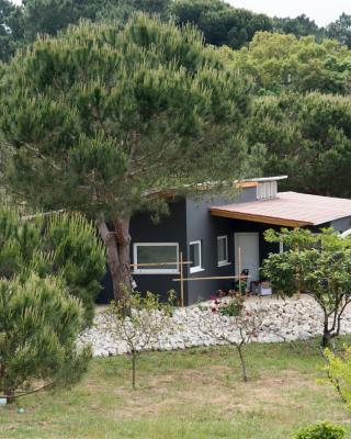 Quinta do Meco - Beach & Nature