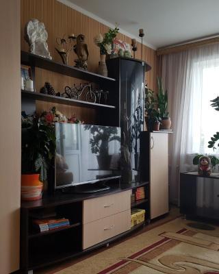 Apartment on Sadovaya 71