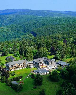 ホテル ヤークトハウス ヴィーゼ