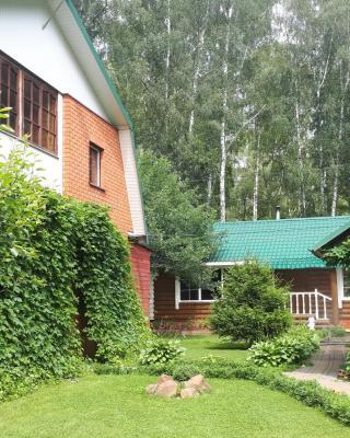 Guest House Dom S Bilyardom