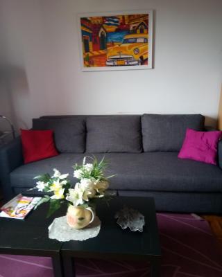 Chambre dans Appartement Confortable