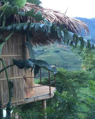 Eco Hills Homestay