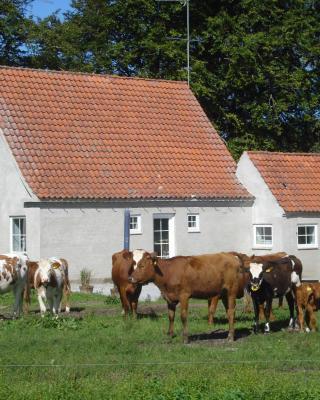Krogsøgård Holiday House