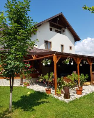 Casa de vacanta Macovei0744