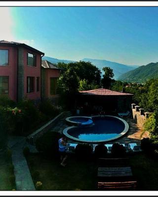 Villa Ananuri