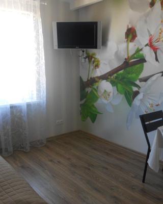 квартира-студия в г. Кропивницком (Кировограде)