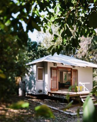 The Little Bush Hut