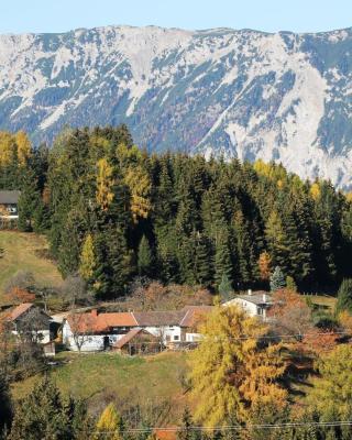 Ferienwohnung Holzer Top 2
