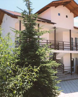 Guest House LETO