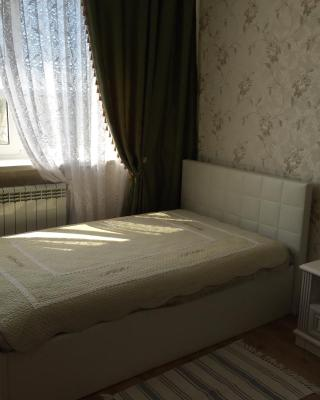 Guesthouse on Zvezdnaya 15