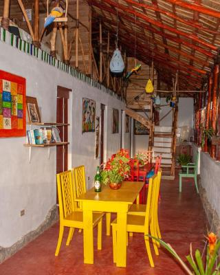 Hostel La Ballena Backpacker