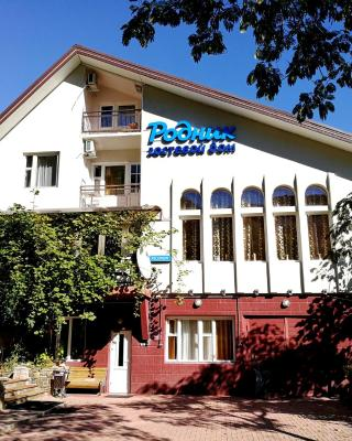 Rodnik Guest house