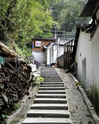 Dai Zhen Wu Tong Ju