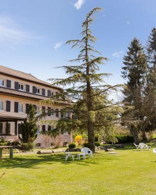 INTER-HOTEL Saint-Julien-en-Genevois Sud Rey du Mont Sion