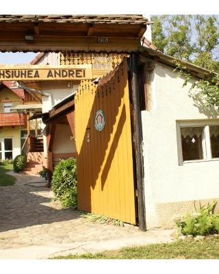 Pensiunea Andrei Sibiel