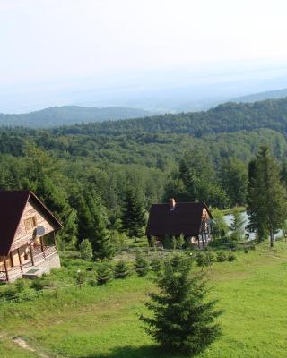 Karpatski Polonyny